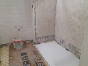 Reformas de baños, pavimentado, cambio de sanitario, platos de ducha y mamparas - reformas alicante campello